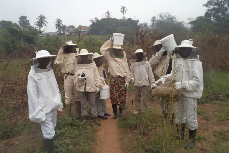 Juillet 2019 : formation de 10 promoteurs apicoles