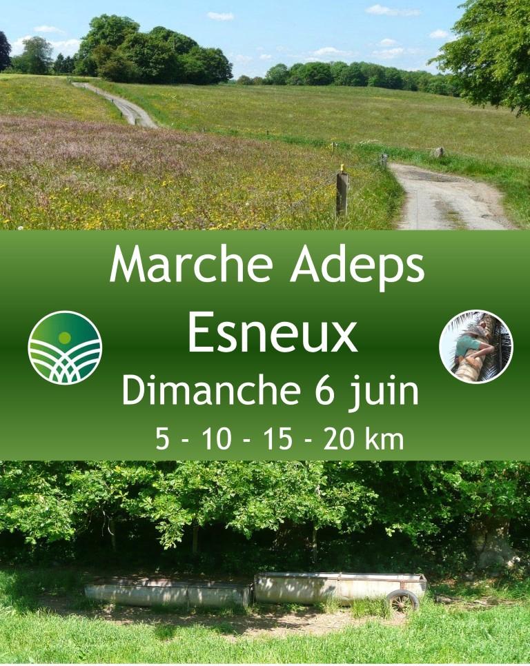 Marche ADEPS à Esneux le 6 juin 2021
